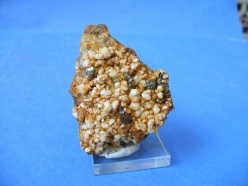 Albita pieza de 5x5cm cristales de 5mm, Guejar sierra Granada.jpg (Autor: Nieves)