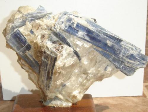 Cianita (cristales de 13 cm) y cuarzo-Minas Gerais-Brasil (Autor: Anisio Claudio)