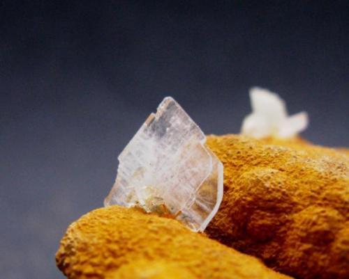 Barita sobre Limonita. Mina San Jorge. La Unión. Murcia. Tamaño cristal de Barita 15x10 mm. (Autor: Jose Luis Otero)