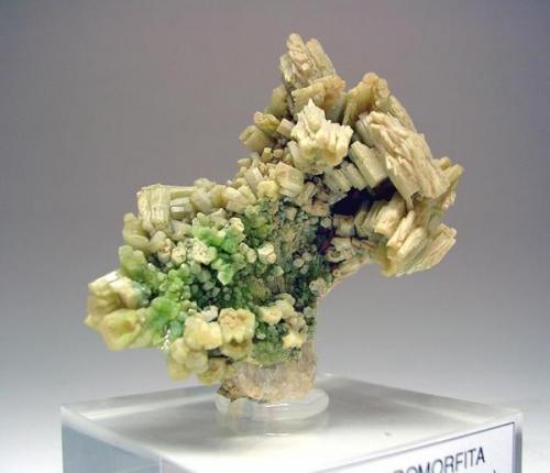 2257-Piromorfita, mina Resuperferolítica, Sta. Eufemia, Córdoba, 4,8x4,4x3 cm. (Autor: Edelmin)