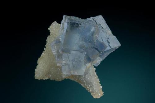 Cubo de fluorita con un bello color verde-azulado  de unos 4 cm de arista implantado sobre una lámina de cristales de cuarzo procedente de la mina La Viesca. Fotografía: Jeff Scovil. (Autor: JRG)