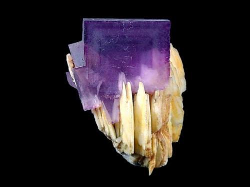 Magnífico cubo sobre cristales de barita de 5,5 cm de arista, como no de La Cabaña. Fotografía: J.R. García (Autor: JRG)