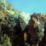 tetraedrita mina el vagon Lanteira Granada cristal de 8mm sobre siderita.jpg (Autor: Nieves)