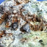 Magnetita sobre serpentina cristales de 1cm, cantera de marmol sierra nevada Granada.jpg (Autor: Nieves)