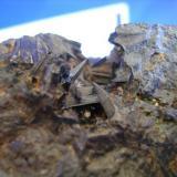 Tremolita-Actinolita La Serena Chile.jpg (Autor: Paola)