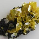Wulfenita. Mina Bismark, Chihuahua, México. Tamaño de la pieza 4x2,5x1,5 cm, con cristales hasta 1 cm. Col. y foto Nacho Gaspar. (Autor: Nacho)