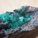 Brochantita pieza de 5x3cm mina la estrella barranco del jaroso los Lobos Almeria.jpg (Autor: Nieves)