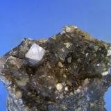 FLUORAPOFILITA Boinas Este-Begega-Belmonte-Asturias. Pieza de 5,5x4,3cm. Cristal 1cm. (Autor: DAni)