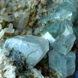 APATITO en cuarzo Cantera-Carballo-La Coruña. Pieza de 7x5cm. Cristal mayor 1,2cm. (Autor: DAni)