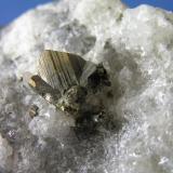 Cubanita. Mina Henderson #2, Chibougamau, Quebec, Canadá. Cristal de 1,1cm. Col. y foto Nacho Gaspar. (Autor: Nacho)