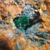 Malaquita mina cortijo Virginia Escullar Almeria, cristales 5mm (Autor: Nieves)