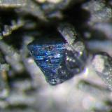 Detalle cristal de Bornita, tamaño del cristal 1,5 mm. Col. y foto Nacho Gaspar. (Autor: Nacho)