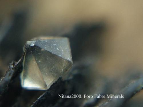 Aristas inferiores a 1 mm. (Autor: Juan de Laureano)