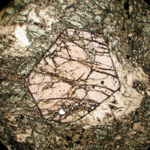 Granate (¿Almandino?), en anfibolita.Cordillera de La Costa, Venezuela. Luz plana polarizada, campo visual aproximado 4,3 mm. (Autor: Vinoterapia)