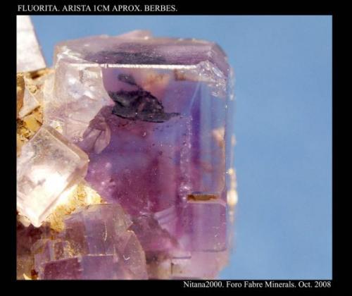 Inclusiones de Fluorita. Tamaño arista 1 cm aprox. Procedencia: Berbes. Asturias (Autor: Juan de Laureano)