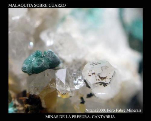 Malaquita La presura.jpg (Autor: Juan de Laureano)