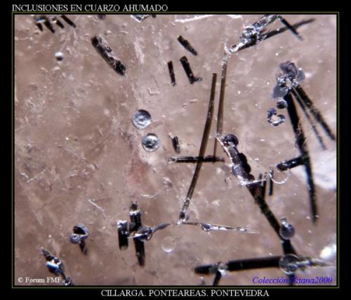 Inclusiones cuarzo ahumado3.jpg (Autor: Juan de Laureano)