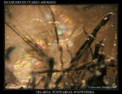 Inclusiones cuarzo ahumado luz.jpg (Autor: Juan de Laureano)