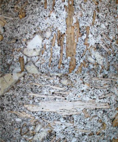 """La foto muestra unos cristales alargados de flogopita, los cuales en forma clara muestran la exfoliación paralela del mineral. En la parte superior de la foto, la flogopita está orientada en posición """"norte-sur"""", mostrando una coloración pardo-naranja. En la zona inferior, los mismos cristales, ahora orientados """"este-oeste"""" muestran unos tonos mucho mas claros. (Autor: Vinoterapia)"""