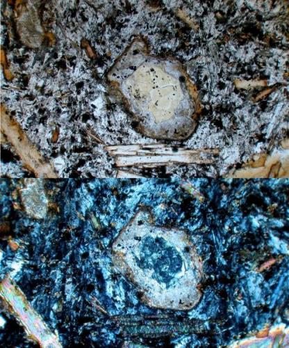 En la parte superior (luz plana polarizada) se muestra un cristal de olivino con evidentes señales de alteración; un núcleo amarillo verdoso rodeado de un ancho halo de tonos pardos. También se notan unas inclusiones opacas, las cuales corresponden al objeto de la foto siguiente. En la parte inferior (polarizadores cruzados) se ve que el núcleo corresponde a minerales del grupo de la serpentina (antigorita / lizardita), mientras que el halo corresponde a minerales del tipo de la sericita. (Autor: Vinoterapia)