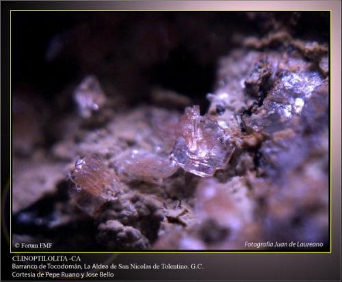 Clinoptilolita ca 2.jpg (Autor: Juan de Laureano)