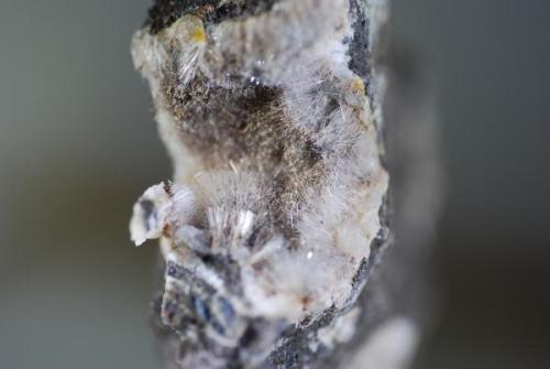 Puede ser Erionita??? Tamaño geoda 20*5mm (Autor: Jose Bello)