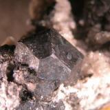 Calcosina. Las Cruces (Sevilla). Inexplicablemente uno de los hallazgos mineralógicos recientes más interesantes de la península está pasando bastante desapercibido... imagen a 20x. (Autor: Cesar M. Salvan)