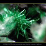 brochantita barranco jaroso.jpg (Autor: josminer)