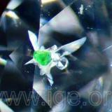 Inclusión de cromodiópsido en un diamante tallado analizado en nuestro laboratorio. La inclusión está rodeada de halos de tensión y muestra el característico color verde esmeralda. Este conjunto aparenta una caprichosa forma de pájaro. Inclusión característica de los diamantes de la serie peridotitica. Iluminación lateral por fibra óptica. 30X. (Autor: Egor Gavrilenko)