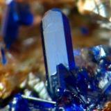 AZURITA. el gorguel, cristal de 1 mm.jpg (Autor: josminer)
