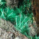 BROCHANTITA, barranco jaroso, encuadre de 3 mm.jpg (Autor: josminer)