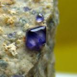 Fluorita, Uxes (La Coruña). Cristal mayor 1,5 mm. (Autor: nimfiara)