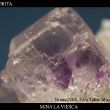 Fluorita Viesca 1.jpg (Autor: Juan de Laureano)