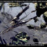 Turmalina cuarzo 2.jpg (Autor: Juan de Laureano)
