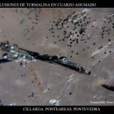 Turmalina cuarzo.jpg (Autor: Juan de Laureano)