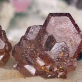 Otro grupito de cristales de vanadinita, de unos 2mm, una vez eliminados los reflejos internos que me degradaban la imagen en los ejemplos anteriores (Autor: soldevilla)