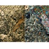 Seccion basal en cristal de Diopsido. En la izquierda (luz plana) se observa claramente el clivaje tipico de los piroxenos (casi perpendicular). En la foto de la derecha (polarizadores cruzados) se observa que el cristal esta maclado dada la diferencia de coloracion  a ambos lados de este. (Autor: Vinoterapia)