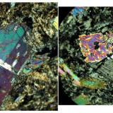 Cristales maclados de Diopsido, notese la diferente posicion del plano de macla con respecto al cristal. Polarizadores cruzados. (Autor: Vinoterapia)