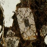 andalucita, variedad quiastolita (Autor: Cosme Perez)