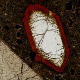 cristal de olivino con aureola de iddingsita (Autor: Cosme Perez)