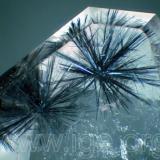 hollandite_quartz.jpg (Autor: Egor Gavrilenko)
