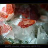 calcita gilico.jpg (Autor: josminer)
