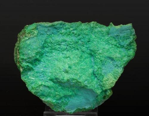 """Népouita dominante Nueva Caledonia 9 × 7 × 2.3 cm. Esta es una de las """"Garnieritas"""" (en realidad Népouita dominante) de la colección duplicados Folch. (Autor: Jordi Fabre)"""