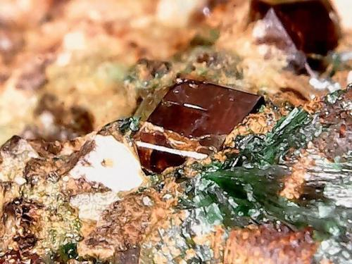 Granate y Malaquita<br />Mines de Can Montsant, Can Montsant (Massís del Montnegre), Hortsavinyà, Tordera, Comarca Maresme, Barcelona, Catalunya, España<br />1 cm<br /> (Autor: Obsi)