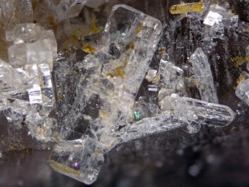 Bertrandite<br />Senhora da Assunção Mine, Aldeia Nova, Ferreira de Aves, Sátão, Viseu District, Portugal<br />FOV 5 mm<br /> (Author: Cesar M. Salvan)