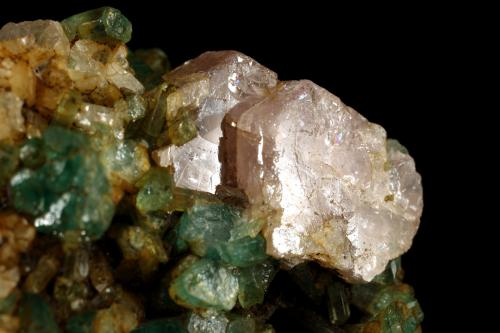 Beryl (variety emerald), Albite (variety cleavelandite), Calcite, Apatite<br />Colombia<br />37x18x33mm<br /> (Author: Fiebre Verde)