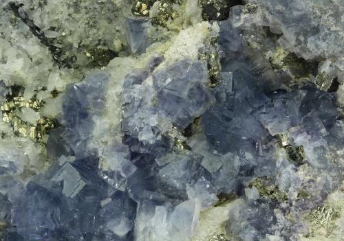 Fluorite on Quartz with Pyrite<br />Sweet Home Mine, Mount Bross, Alma District, Park County, Colorado, USA<br />157 x 112 x 56 mm<br /> (Author: GneissWare)