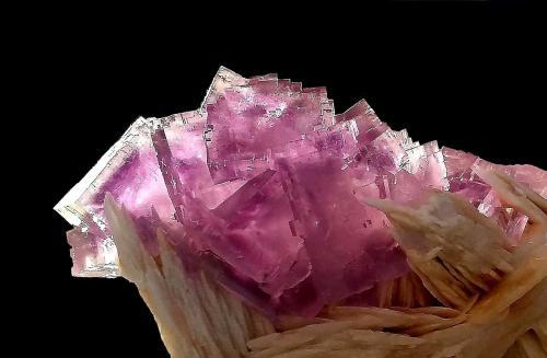Fluorita sobre Barita<br />La Cabaña, Zona minera de Berbes, Valdelmar, Berbes, Ribadesella, Comarca Oriente, Asturias, Principado de Asturias, España<br />13x10,5x7 cm.<br /> (Autor: Nacho)