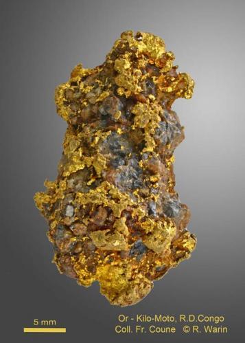 Gold<br />Kilomoto Mines, Bafwasende, Tshopo District, Orientale Province, Congo DR (Zaire)<br /><br /> (Author: Roger Warin)