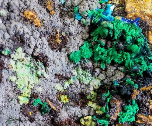 Conicalcita<br />Concesión La Reconquistada, Pastrana, Mazarrón, Comarca Alto Guadalentín, Murcia, Región de Murcia, España<br />Encuadre de la fotografía 12 mm.<br /> (Autor: Rafael Galiana)